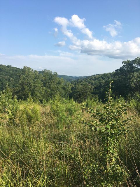 Additional photo for property listing at 9760 Chestnut Ridge Road 9760 Chestnut Ridge Road Heiskell, Tennessee 37754 United States