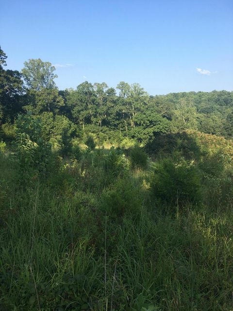 Land for Sale at 9760 Chestnut Ridge Road 9760 Chestnut Ridge Road Heiskell, Tennessee 37754 United States
