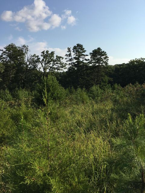 Additional photo for property listing at 9760 Chestnut Ridge Road 9760 Chestnut Ridge Road Heiskell, Tennessee 37754 Estados Unidos