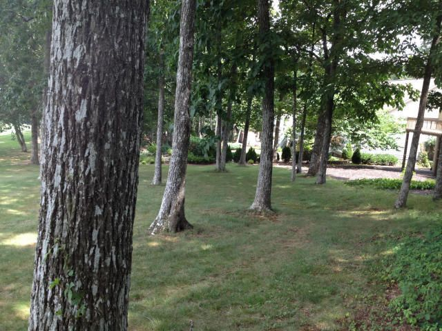 Additional photo for property listing at 164 Baltusrol Road 164 Baltusrol Road Crossville, Tennessee 38558 États-Unis