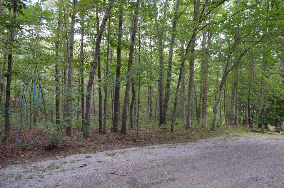 Additional photo for property listing at 24 Oakburn Court 24 Oakburn Court Crossville, Tennessee 38558 United States
