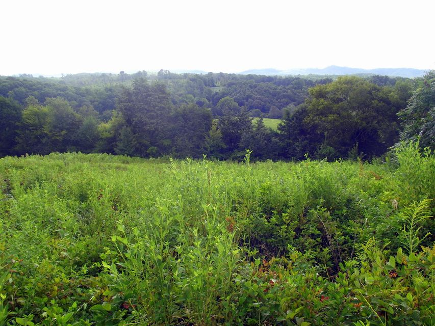 Additional photo for property listing at High Ridge Road High Ridge Road Sweetwater, Tennessee 37874 États-Unis