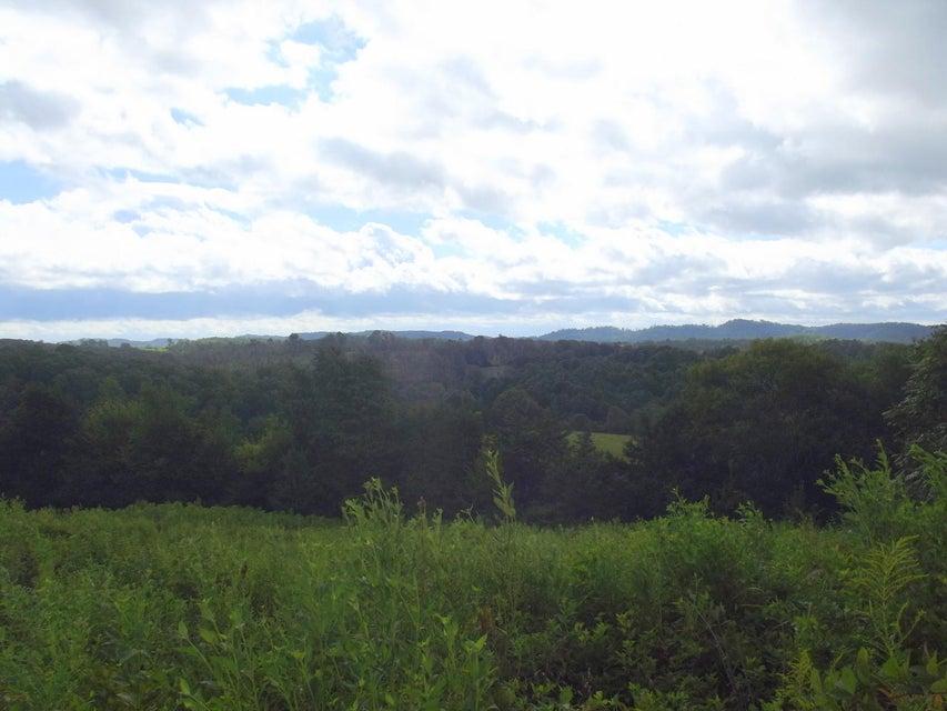 土地 为 销售 在 High Ridge Road High Ridge Road Sweetwater, 田纳西州 37874 美国