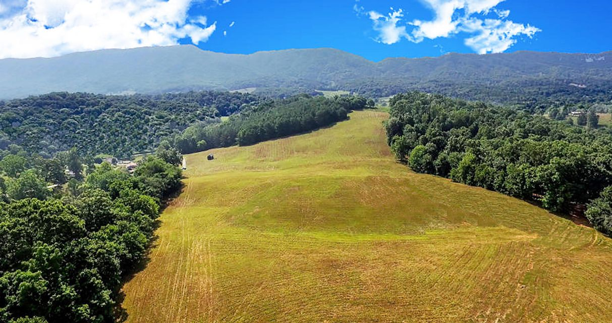 Land for Sale at 459 Merritt Road Washburn, Tennessee 37888 United States