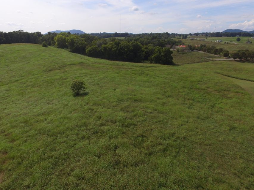 Additional photo for property listing at Lot 69 River Drive Lot 69 River Drive Blaine, Tennessee 37709 États-Unis