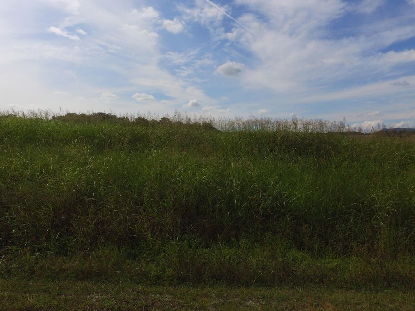 Additional photo for property listing at Lot 69 River Drive Lot 69 River Drive 布莱恩, 田纳西州 37709 美国
