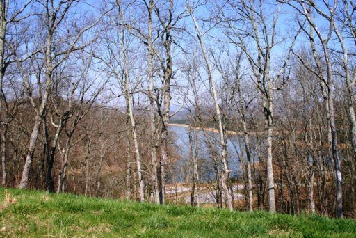 Land for Sale at 2001 Turner Landing Road 2001 Turner Landing Road Russellville, Tennessee 37860 United States