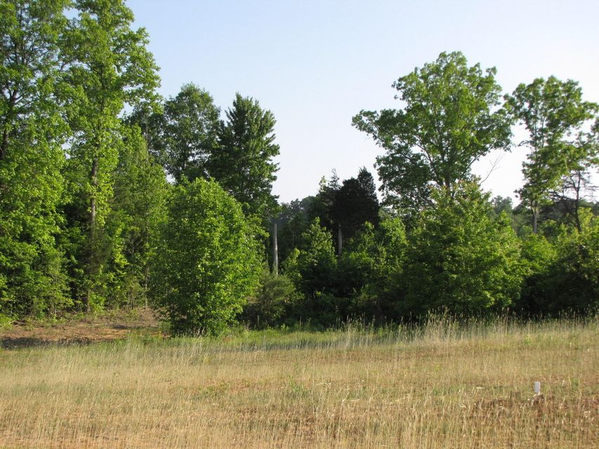Additional photo for property listing at Ballplay Road Ballplay Road Madisonville, Теннесси 37354 Соединенные Штаты