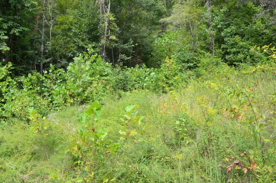 Additional photo for property listing at 40 Ac Swann Creek/Hen Johnson 40 Ac Swann Creek/Hen Johnson Sneedville, Теннесси 37869 Соединенные Штаты