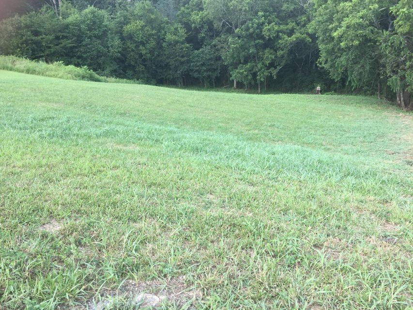 Additional photo for property listing at 236 Mississippi Avenue 236 Mississippi Avenue Seymour, Tennessee 37865 United States