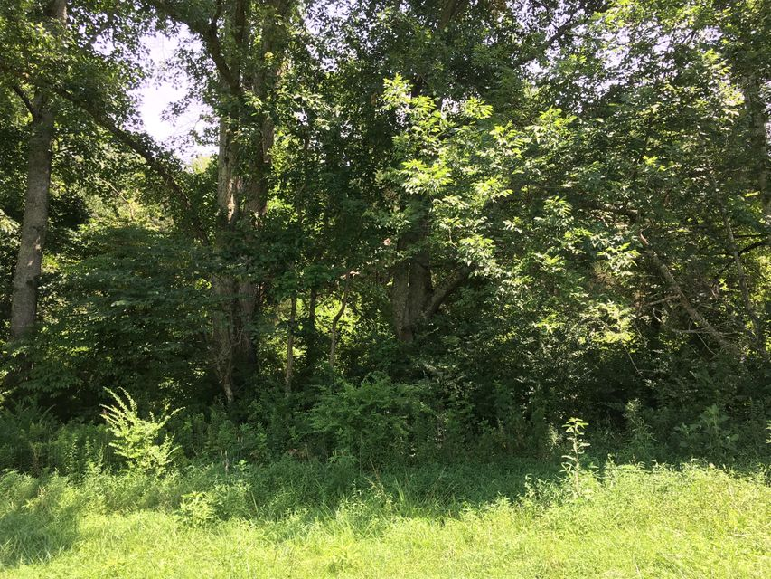 Additional photo for property listing at Mcguire Road Road Mcguire Road Road New Market, Tennessee 37820 États-Unis