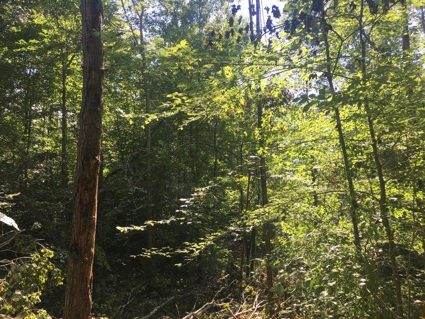 Additional photo for property listing at Maiden Lane Maiden Lane Speedwell, Теннесси 37870 Соединенные Штаты