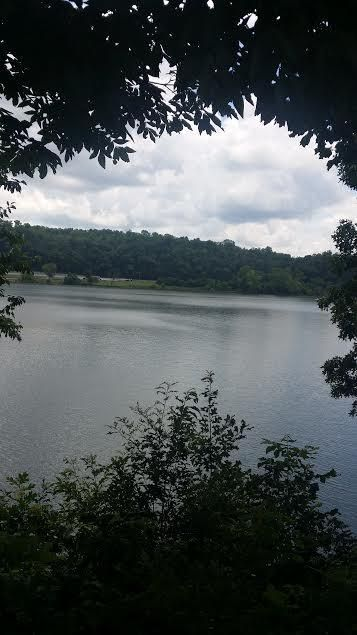 Land for Sale at St Andrews Drive St Andrews Drive Baneberry, Tennessee 37890 United States