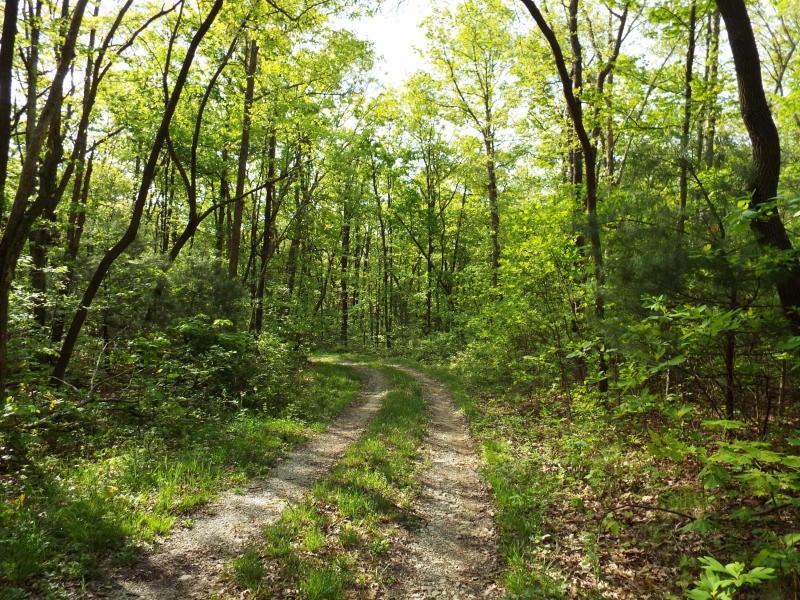 Земля для того Продажа на Off Smith Mountain Road Off Smith Mountain Road Rockwood, Теннесси 37854 Соединенные Штаты