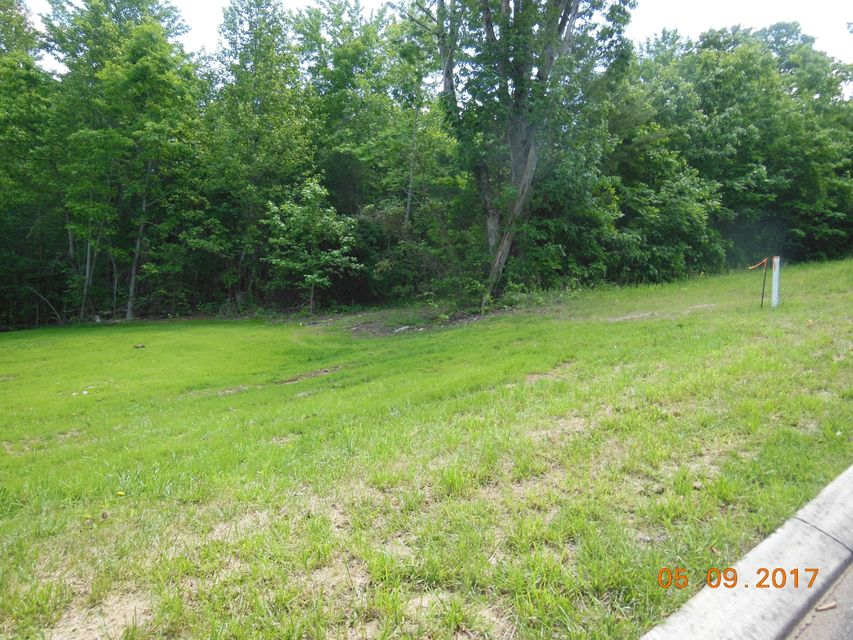Land for Sale at Wood Chase Lane Wood Chase Lane Spring City, Tennessee 37381 United States