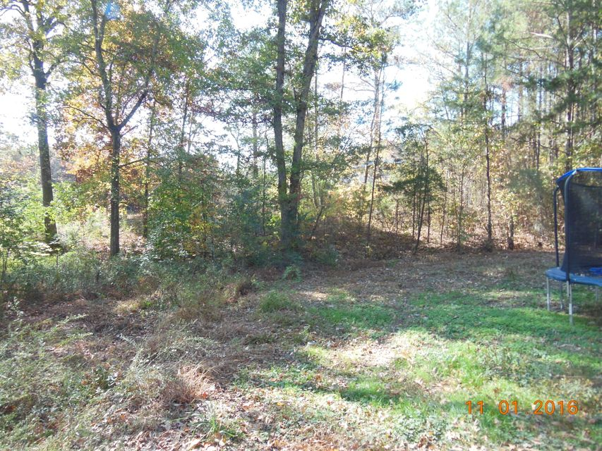 Additional photo for property listing at 4324 Lamontville Road 4324 Lamontville Road Decatur, Tennessee 37322 United States