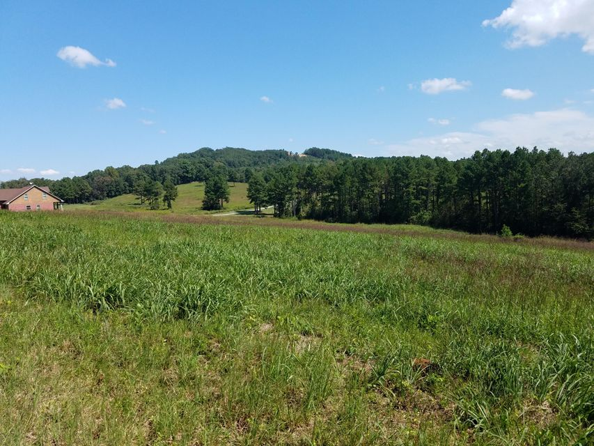 Additional photo for property listing at Lot #31 Tommy Loop Lot #31 Tommy Loop Sweetwater, Tennessee 37874 Estados Unidos