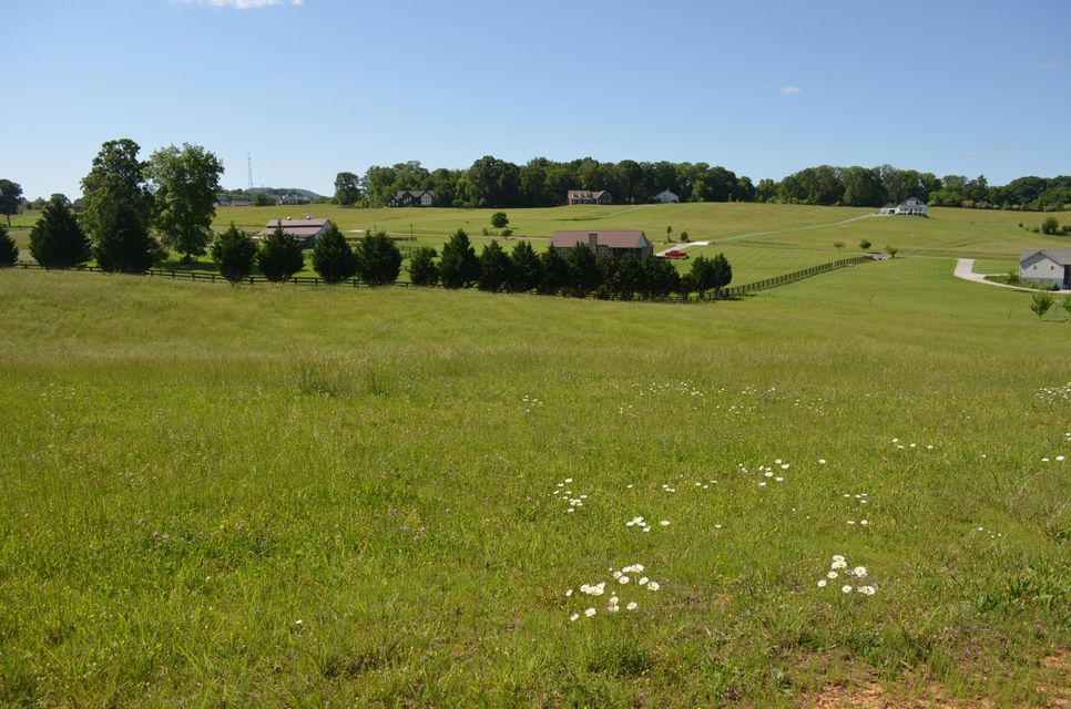 Land for Sale at Richland Rd Lot 17 Richland Rd Lot 17 Blaine, Tennessee 37709 United States
