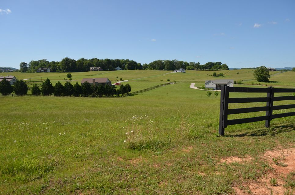Additional photo for property listing at Richland Rd Lot 17 Richland Rd Lot 17 Blaine, Tennessee 37709 United States