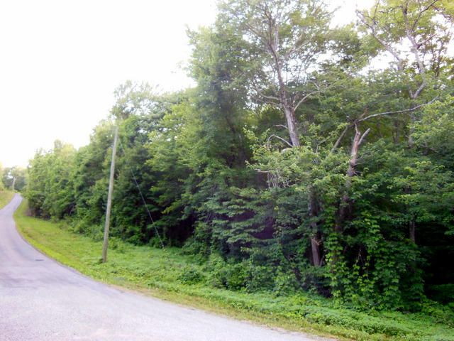 Additional photo for property listing at Cooper Hollow Road Cooper Hollow Road Tellico Plains, Tennessee 37385 Estados Unidos