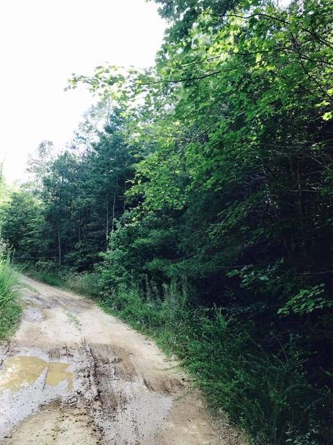 Additional photo for property listing at 17.15 Acre County Road 87 17.15 Acre County Road 87 Athens, Tennessee 37303 United States