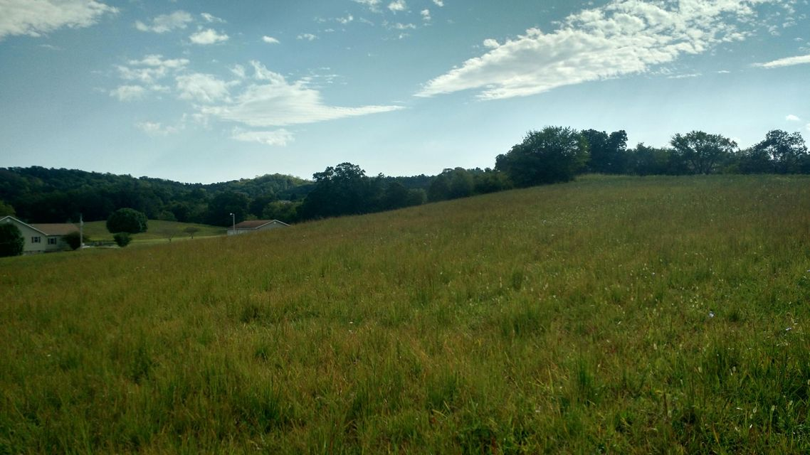 Land for Sale at 5.01 Acres N Highway 340 Parrottsville, Tennessee 37843 United States