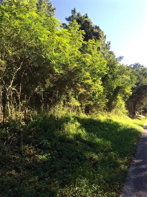Additional photo for property listing at Tunnel Hill Road Tunnel Hill Road Harriman, Tennessee 37748 États-Unis