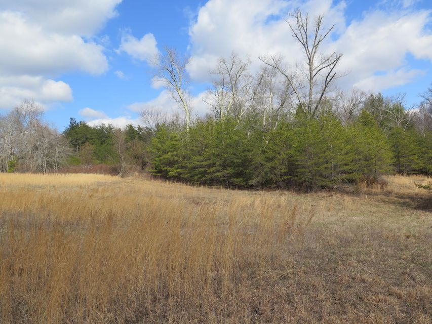 Additional photo for property listing at Mountain View Drive Mountain View Drive Deer Lodge, Tennessee 37726 United States