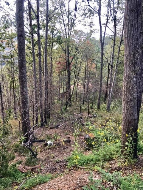 Additional photo for property listing at Lot 10 Vixen Run Lot 10 Vixen Run Gatlinburg, 田纳西州 37738 美国