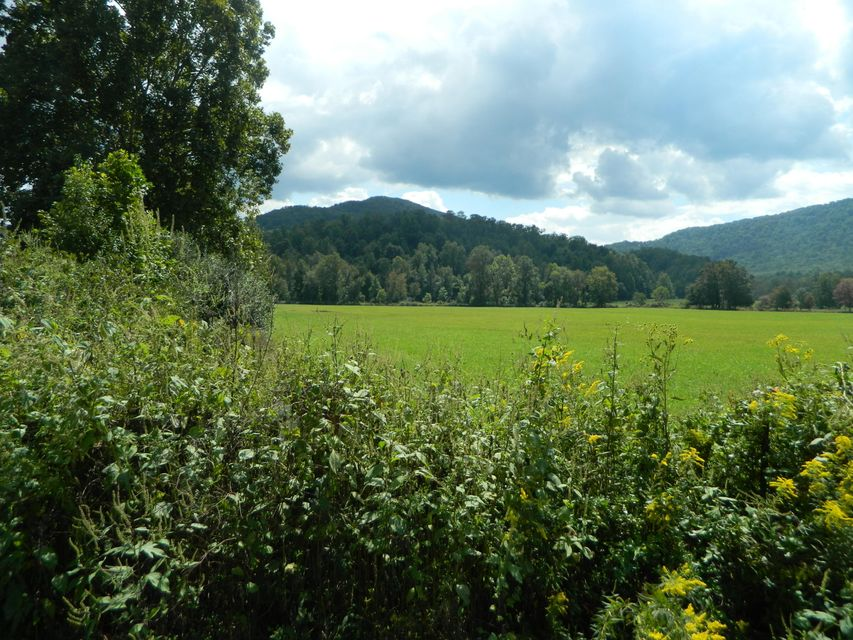 Land for Sale at Mill Creek Road Mill Creek Road Sunbright, Tennessee 37872 United States