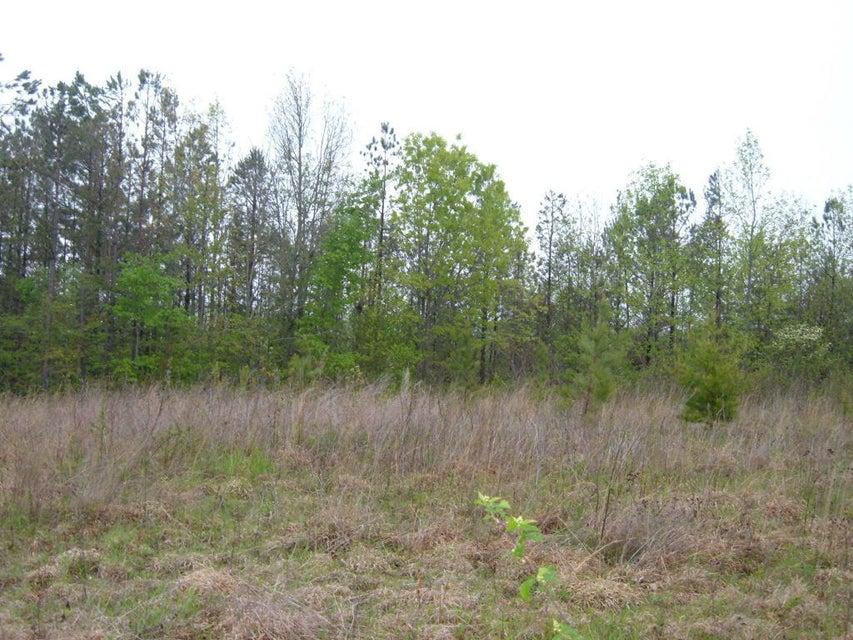 土地,用地 为 销售 在 Carl Griffith Road Carl Griffith Road Robbins, 田纳西州 37852 美国