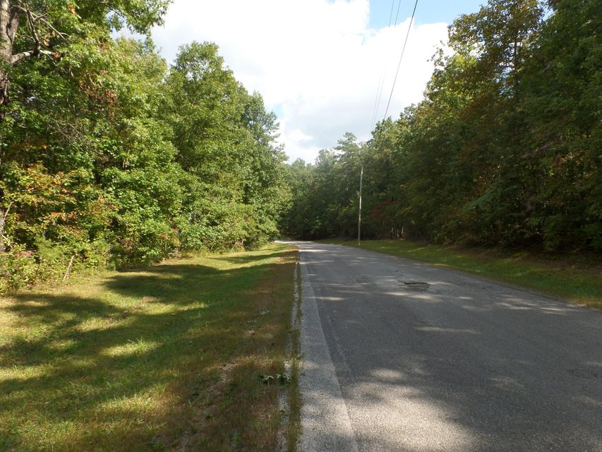 Additional photo for property listing at 8.2 Ac Goodson Tr 8.2 Ac Goodson Tr Monterey, Tennessee 38574 United States