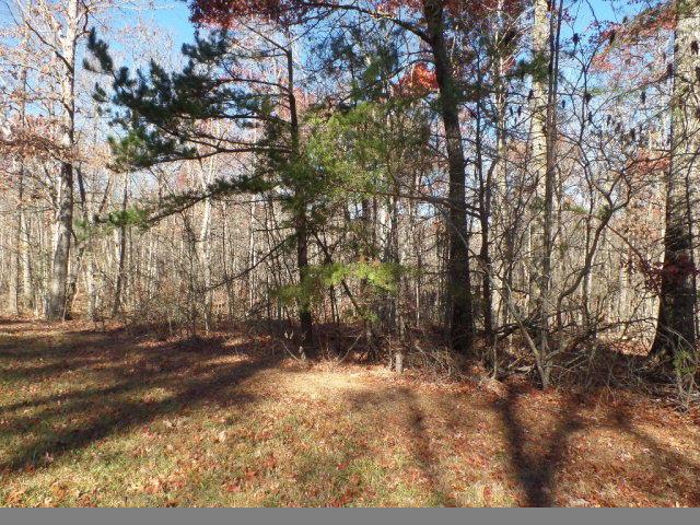 Additional photo for property listing at 8.2 Ac Goodson Tr 8.2 Ac Goodson Tr Monterey, Tennessee 38574 Estados Unidos