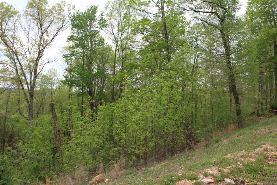 Additional photo for property listing at 545 Hickory Way 545 Hickory Way Lafollette, Tennessee 37766 États-Unis