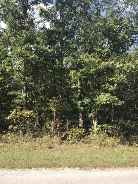 Additional photo for property listing at 8051 Delaware Drive 8051 Delaware Drive Crossville, Tennessee 38572 États-Unis