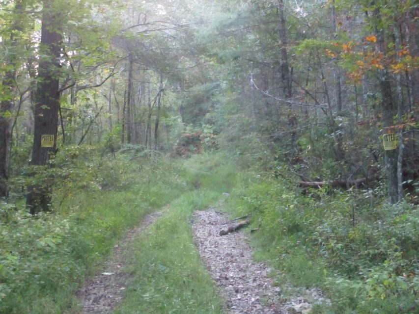Additional photo for property listing at Nydeck Road Nydeck Road Robbins, Tennessee 37852 United States