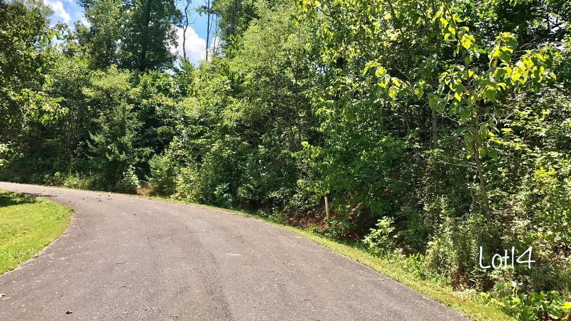 Additional photo for property listing at Oneil Rd Lot 14 Oneil Rd Lot 14 Cosby, 田纳西州 37722 美国