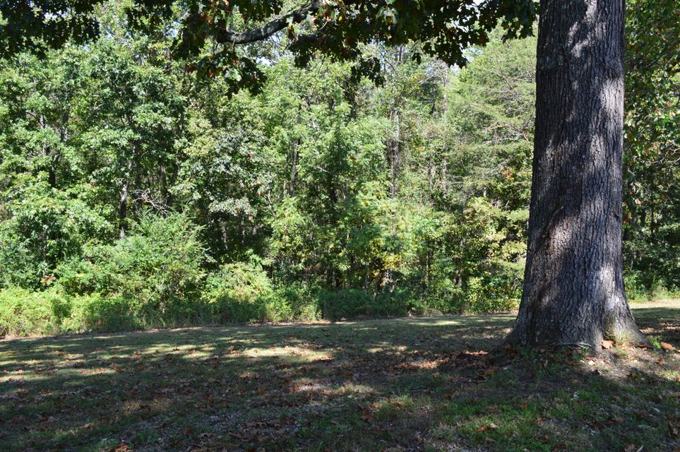Additional photo for property listing at 415 Black Oak Road 415 Black Oak Road Harriman, Tennessee 37748 Estados Unidos