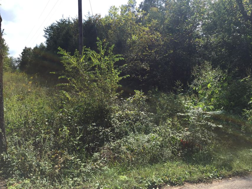 Additional photo for property listing at Jd Farm 10 Road Jd Farm 10 Road Tellico Plains, Tennessee 37385 États-Unis