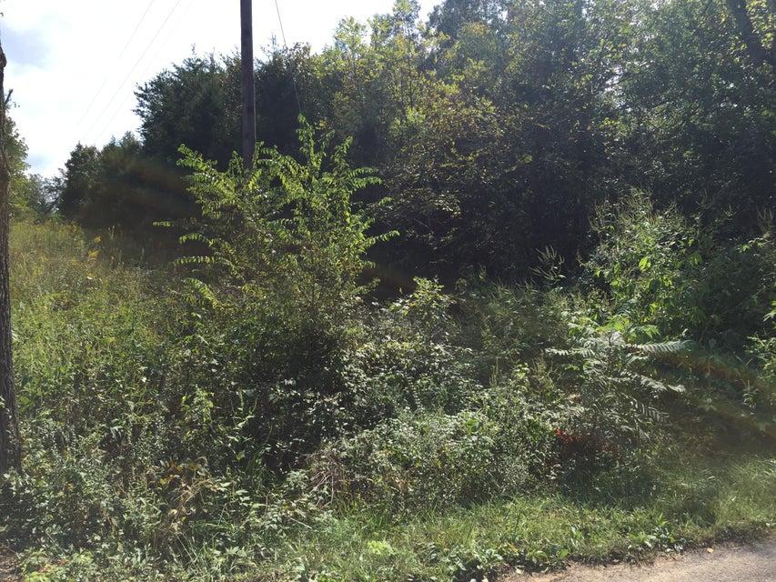 Terrain pour l Vente à Jd Farm 10 Road Jd Farm 10 Road Tellico Plains, Tennessee 37385 États-Unis