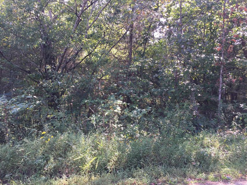 Additional photo for property listing at Jd Farm 9 Road Jd Farm 9 Road Tellico Plains, Tennessee 37385 États-Unis
