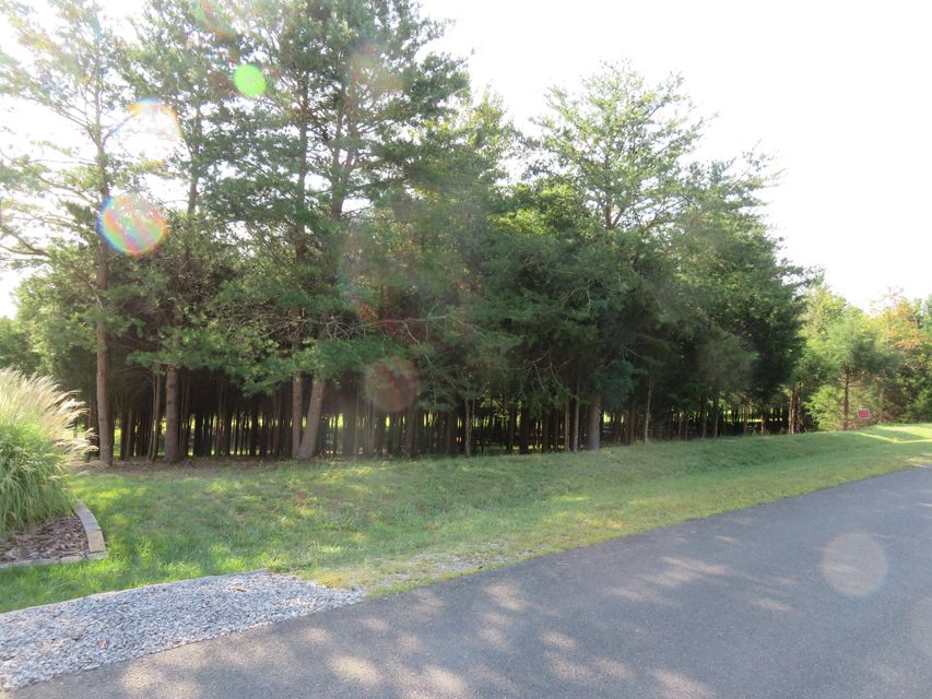Additional photo for property listing at Dudi Trail Dudi Trail Vonore, Tennessee 37885 Estados Unidos
