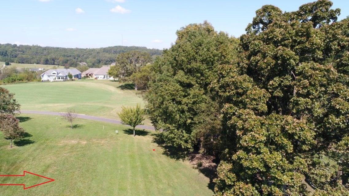 土地,用地 为 销售 在 127 Walelu Trail 127 Walelu Trail Vonore, 田纳西州 37885 美国