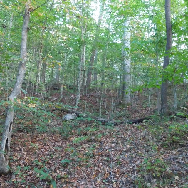 Additional photo for property listing at Gap Chapel Road Gap Chapel Road Sneedville, Теннесси 37869 Соединенные Штаты