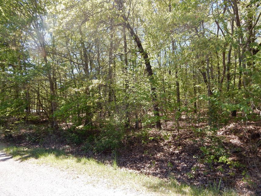 Land for Sale at 116 Kaw Court 116 Kaw Court Crossville, Tennessee 38572 United States