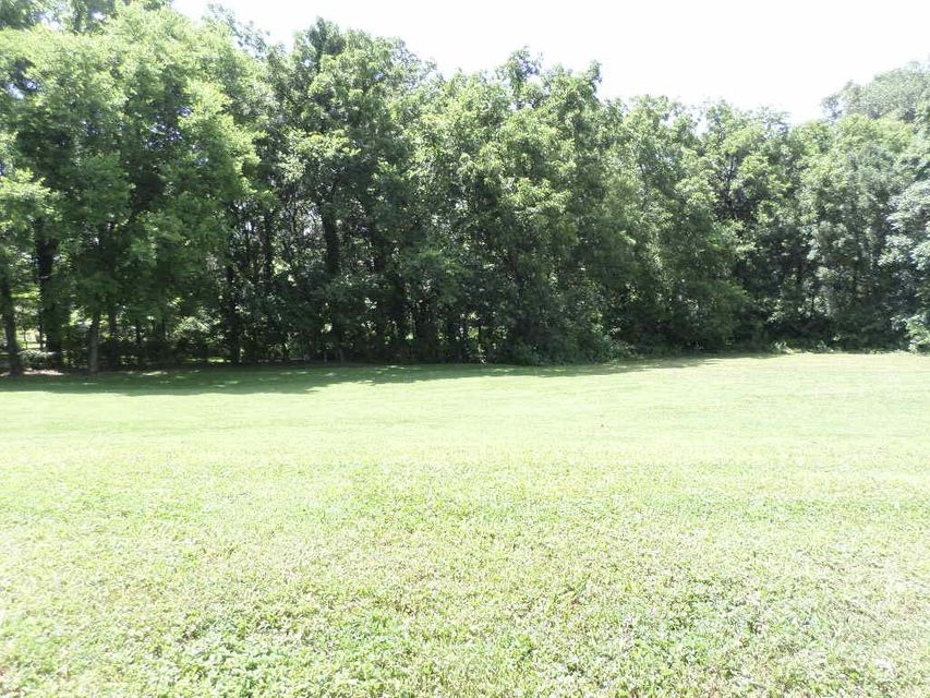 土地,用地 为 销售 在 Meadowcrest Meadowcrest 丹德里奇, 田纳西州 37725 美国