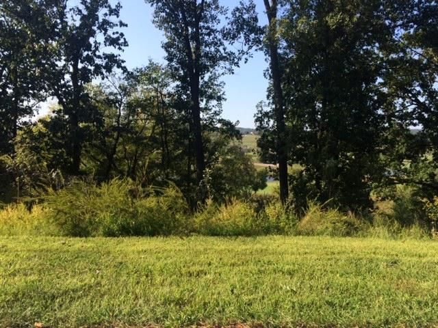 Additional photo for property listing at 585 Black Cove Lane 585 Black Cove Lane Loudon, Tennessee 37774 Estados Unidos