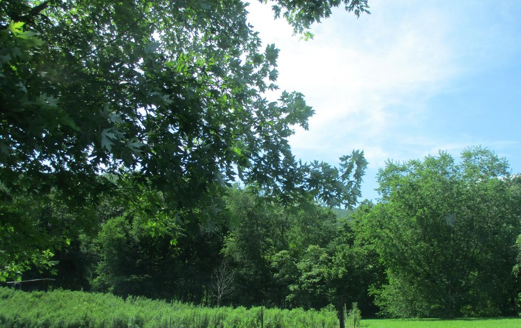 Land for Sale at Polly Blevins Road Polly Blevins Road Hulen, Kentucky 40845 United States