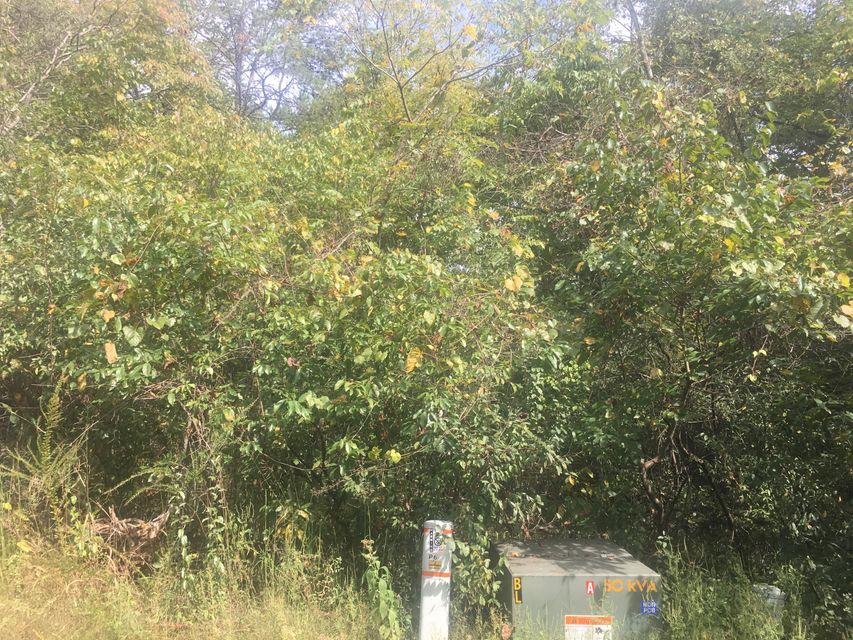Additional photo for property listing at 121 Okema Lane 121 Okema Lane Loudon, Tennessee 37774 États-Unis