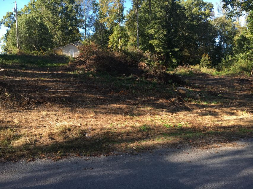Additional photo for property listing at Hunley Road Hunley Road Speedwell, Tennessee 37870 États-Unis